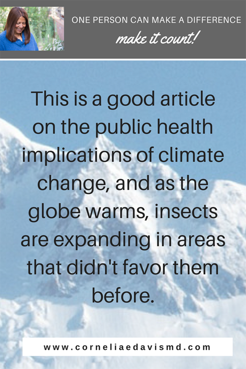 Read more:   https://www.mironline.ca/mosquito-vs-modern-nation-state-climate-change-dengue-fever-india/