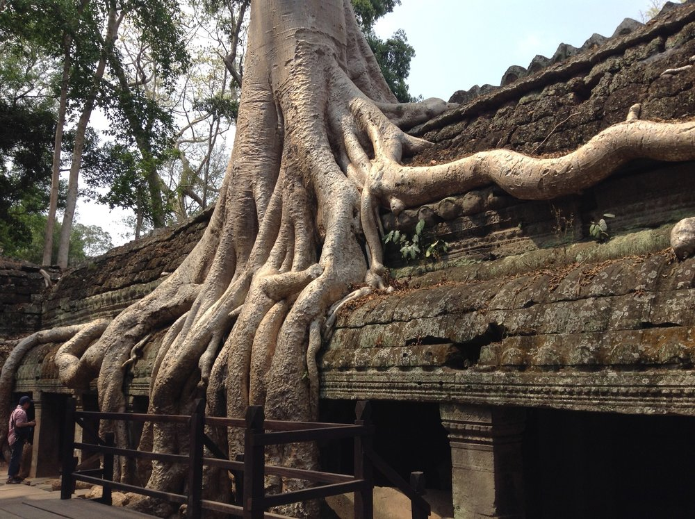 Angkor Wat famous Khmer temple complex (3) - Cambodia