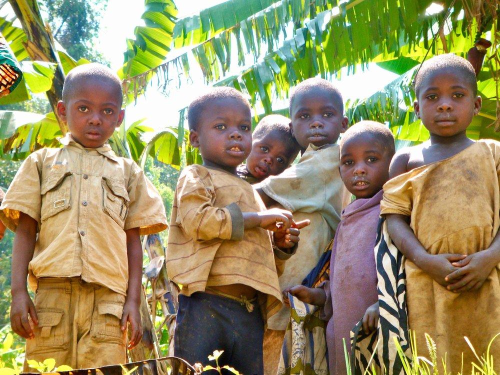 Field trip, Eastern Congo, Bukavu (2) - Congo