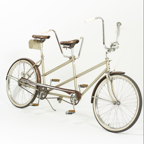 Tandem Bicycle - Rent $75/h
