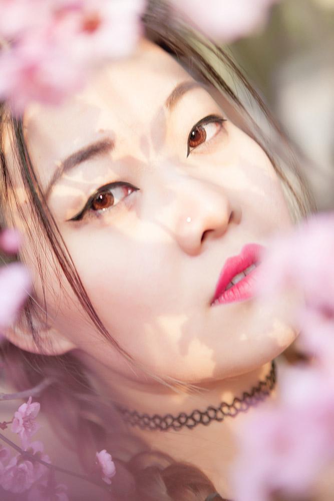 Spring_aobowang03.jpg