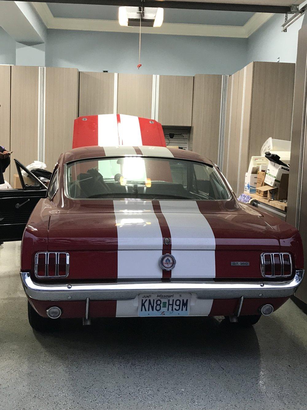 Shelby Car (4).JPG