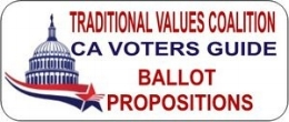 Traditional Values Ballot.jpg