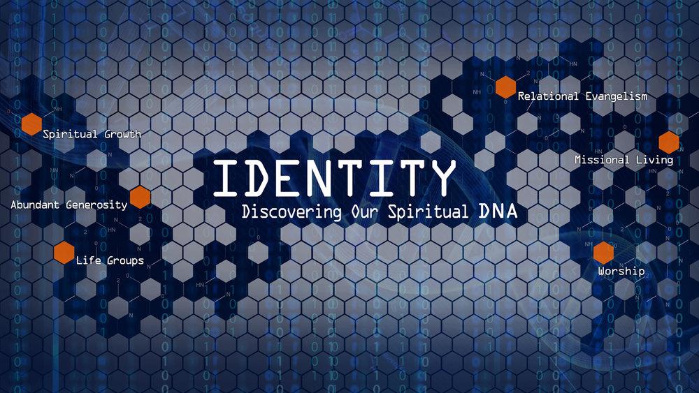 Identity Title Small.jpg