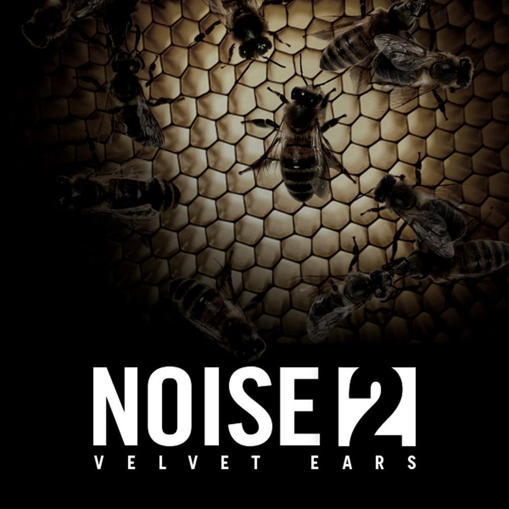 VE_NoiseVol2_1600.jpg