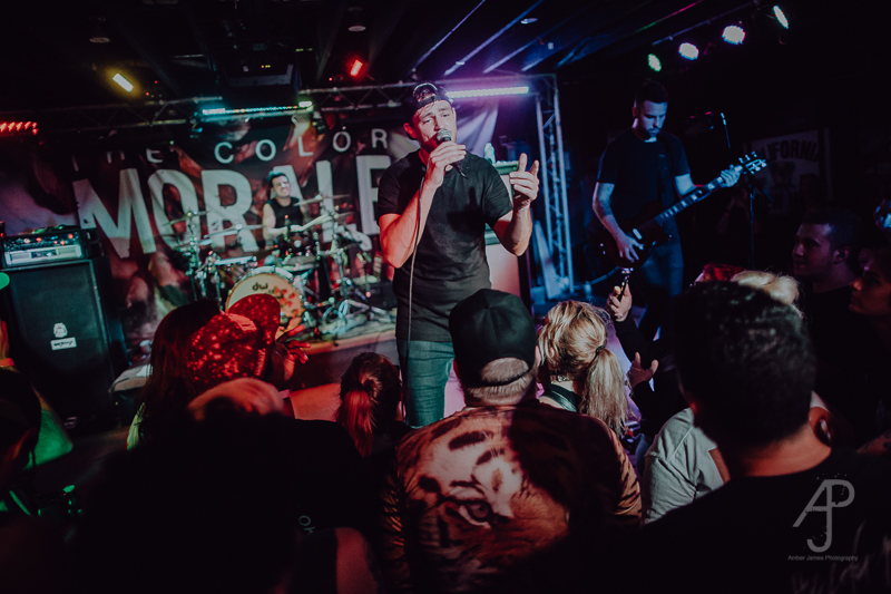 The Color Morale-33.jpg