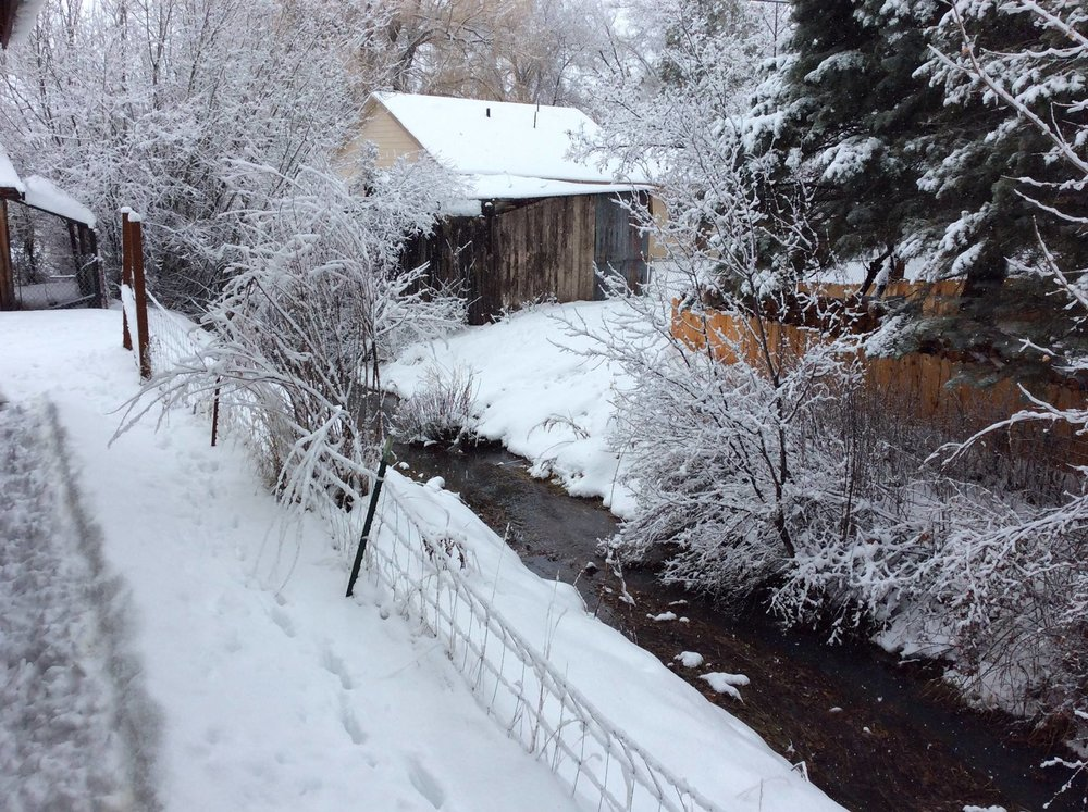Creek in Winter.jpg