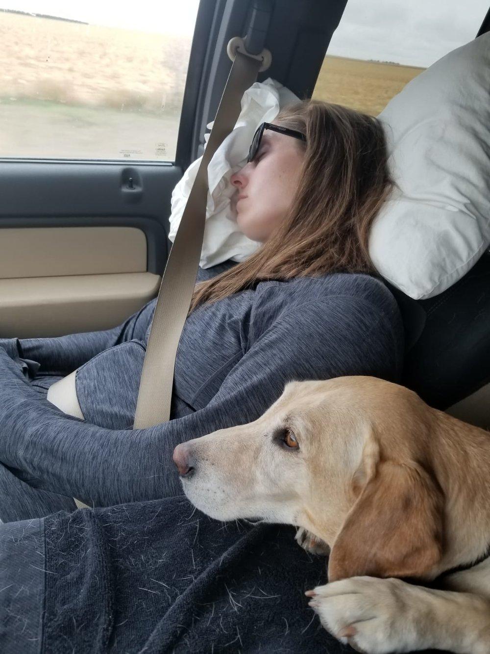 car nap.JPG