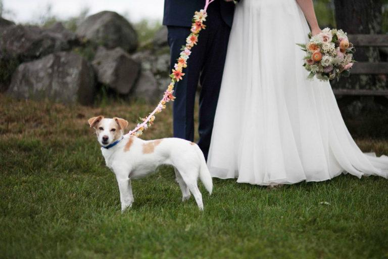 Liberty-view-Farm-Hudson-Valley-Wedding-Photographer-kim-coccagnia-56-768x512.jpg