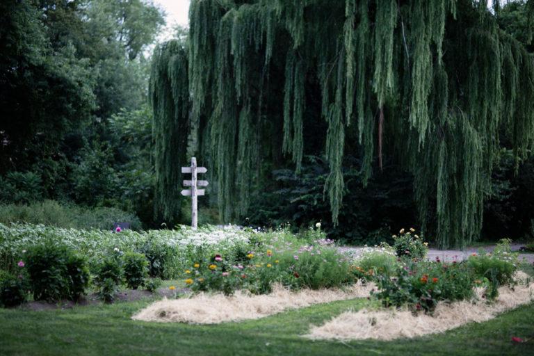 Liberty-view-Farm-Hudson-Valley-Wedding-Photographer-kim-coccagnia-127-768x512.jpg