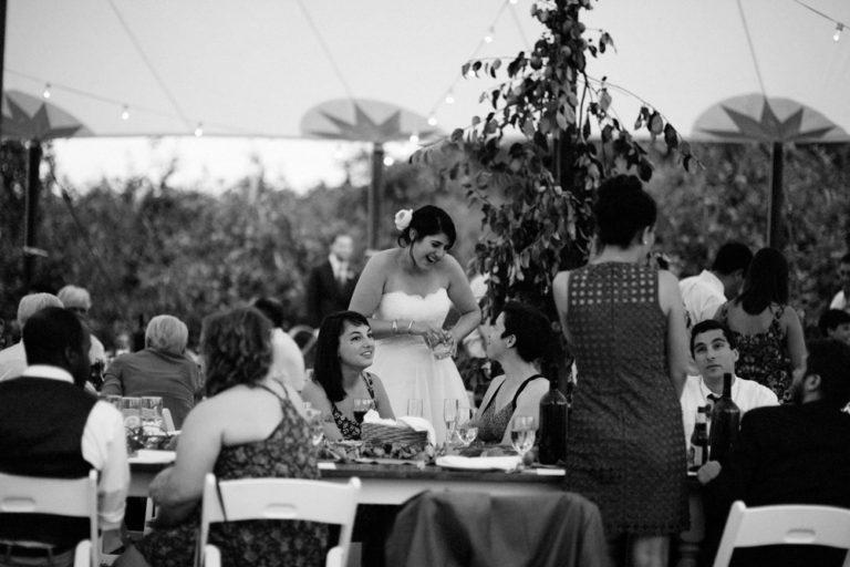 Liberty-view-Farm-Hudson-Valley-Wedding-Photographer-kim-coccagnia-163-768x512.jpg