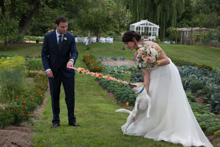 Liberty-view-Farm-Hudson-Valley-Wedding-Photographer-kim-coccagnia-206-768x512.jpg