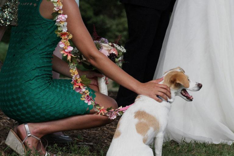 Liberty-view-Farm-Hudson-Valley-Wedding-Photographer-kim-coccagnia-227-768x512.jpg