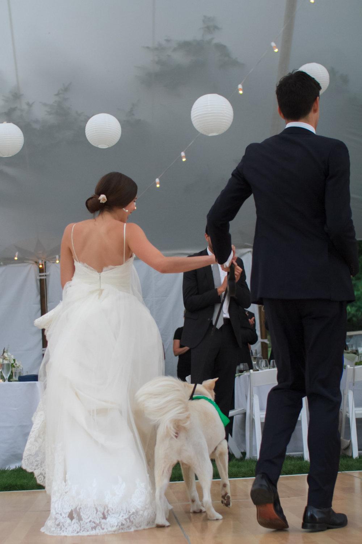 Hudson-valley-weddings-1-2.JPG