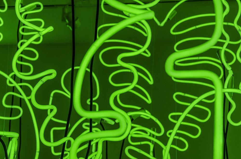 tropicV_detail.jpg