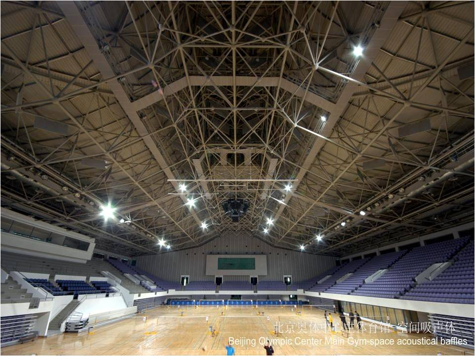 Beijing Olympic Center Main GYM-SPACE Acoustics Baffles