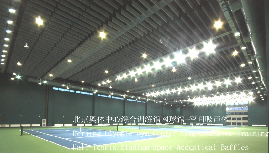 Beijing Olympic Gym Center Comprenensive Training Hall Tennis Stadium-Space Acoustical Baffles