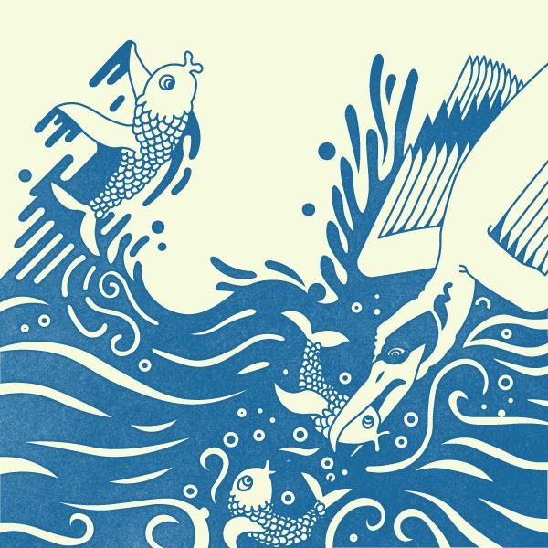 swimmersandfliers-fake-print.png
