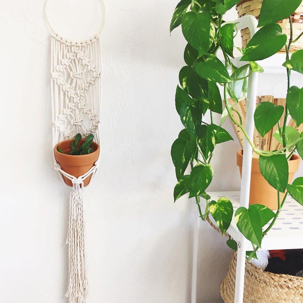 Gold-Hoop-Macrame-Plant-Hanger-4.jpg