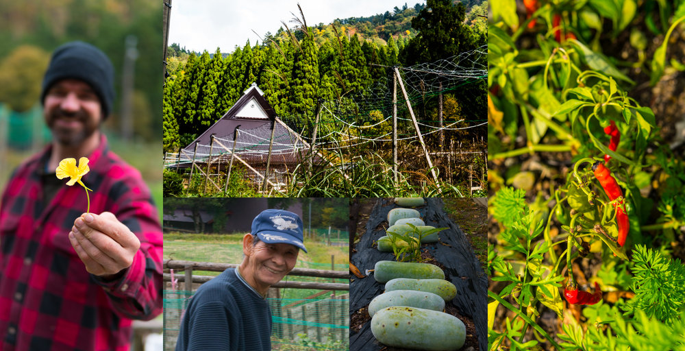 Satoyama Blog 02.jpg