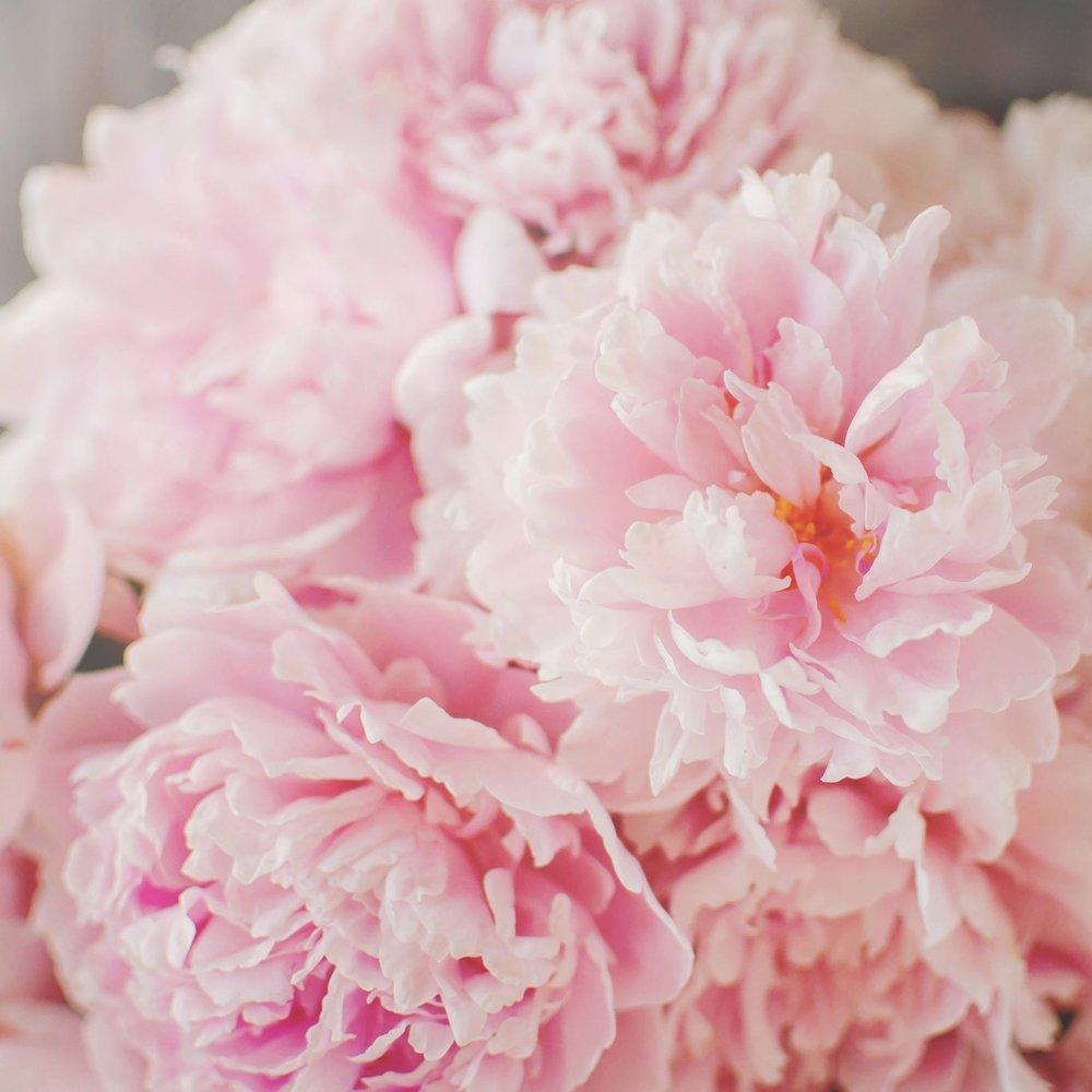 Bucket O'Blooms -