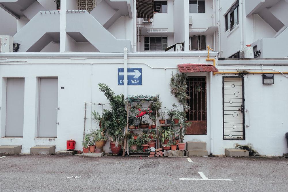 tiong-bahru-street-2