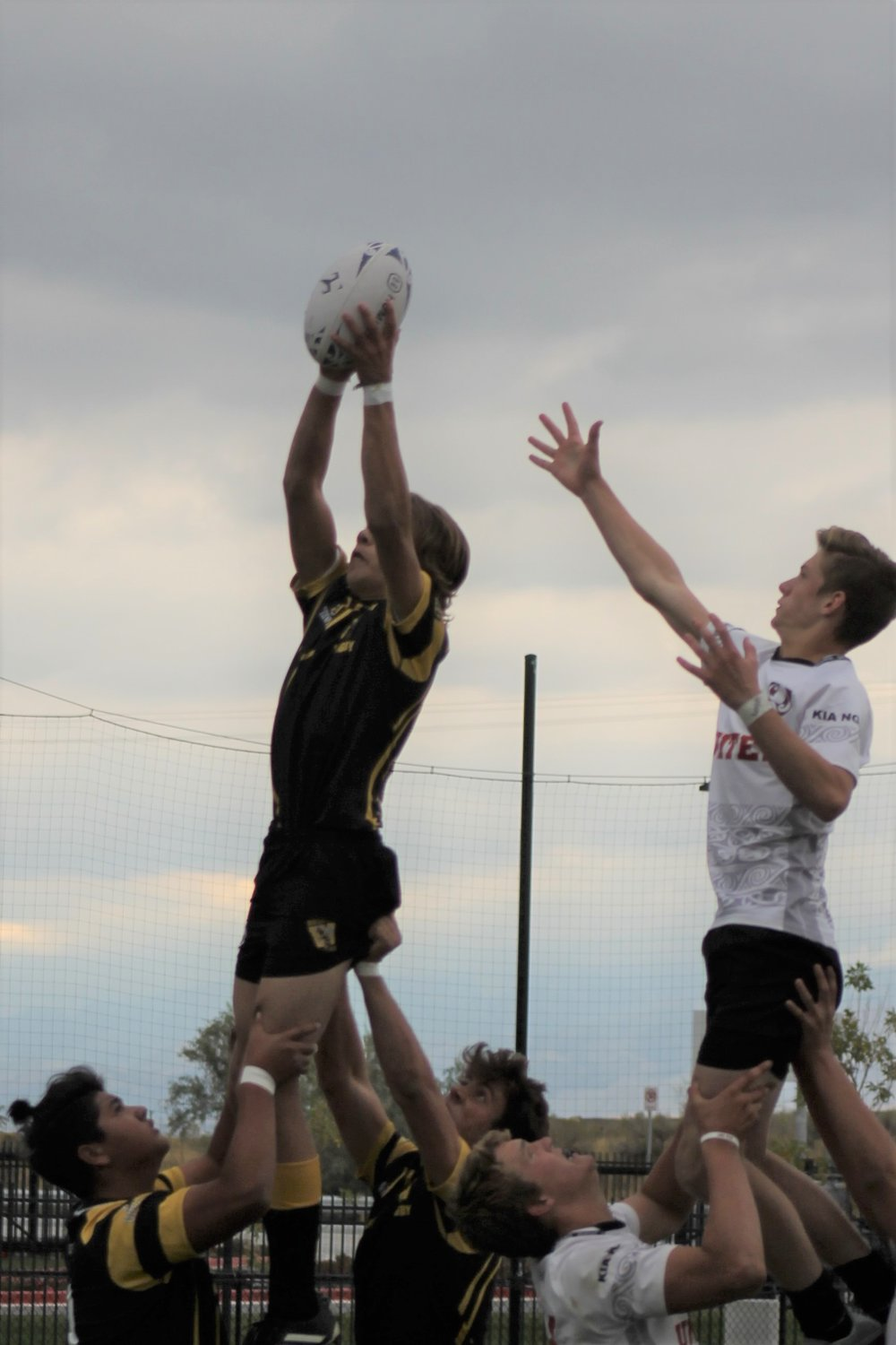whs lineout.jpg