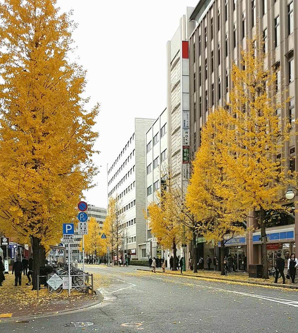 Fukuoka (Hukuoka)