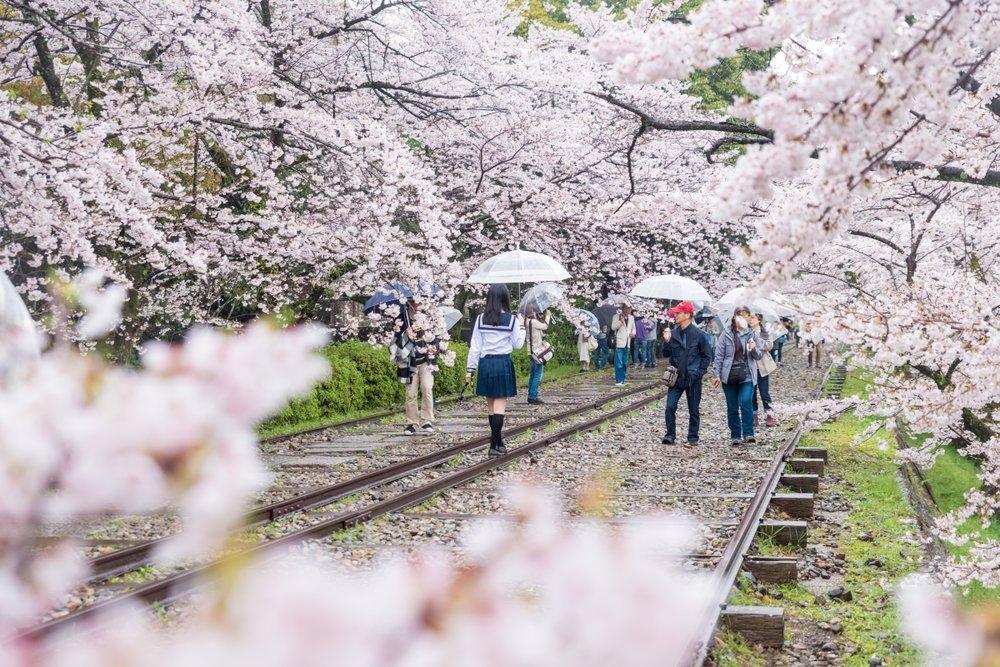 All across Japan