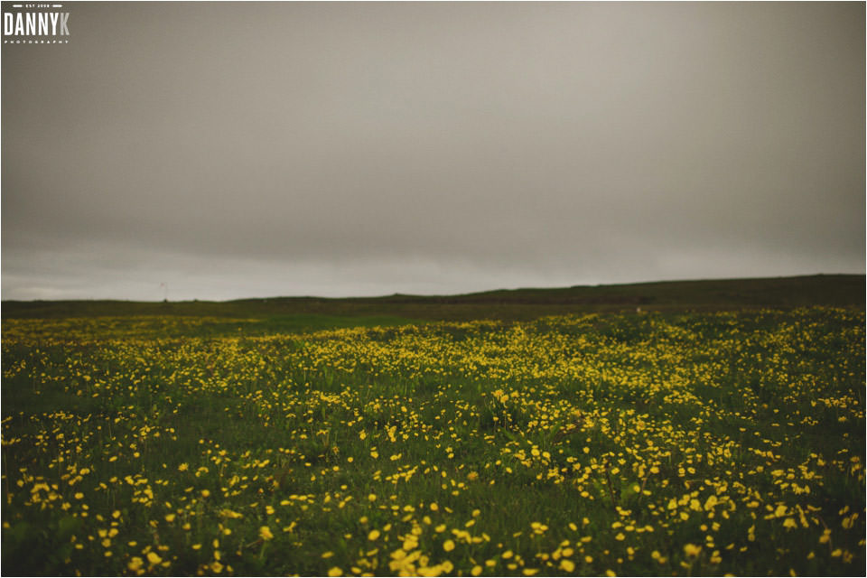 076_Grimsey_Iceland_Destination_Wedding_Photography.jpg