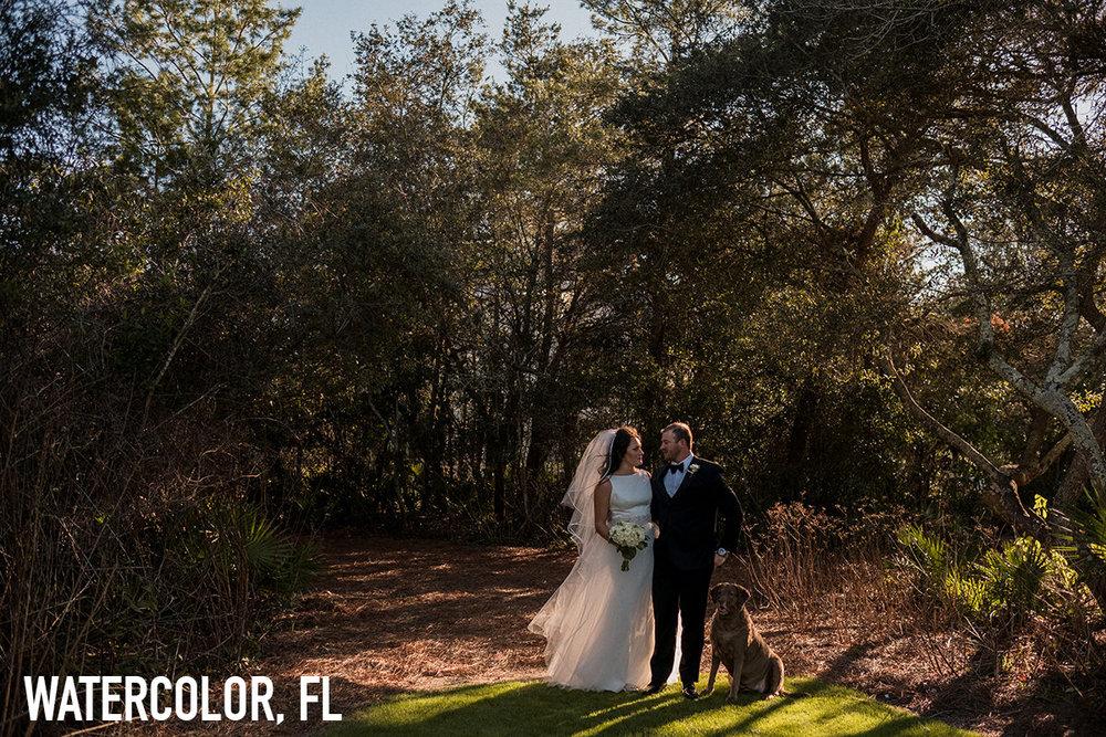 1_Watercolor_Florida_Wedding_Photography copy.jpg