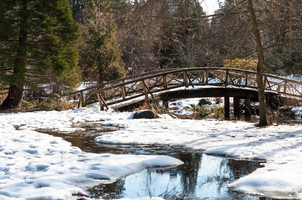 bridge-englishbay