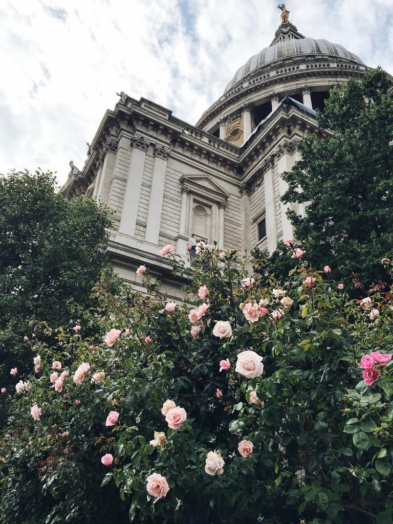 roses-london