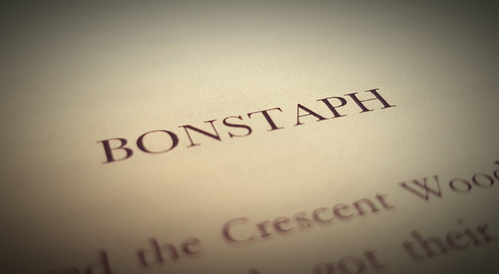 Bonstaph's past has a huge influence in Gone Dragon - Book I.