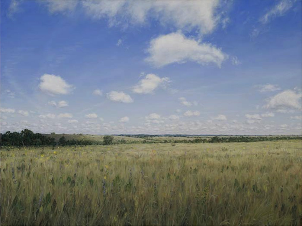 """Black Belt Prairie c. 1775 Montgomery County, Alabama November, 2009 Oil on canvas 24"""" x 32"""" Private Collection"""