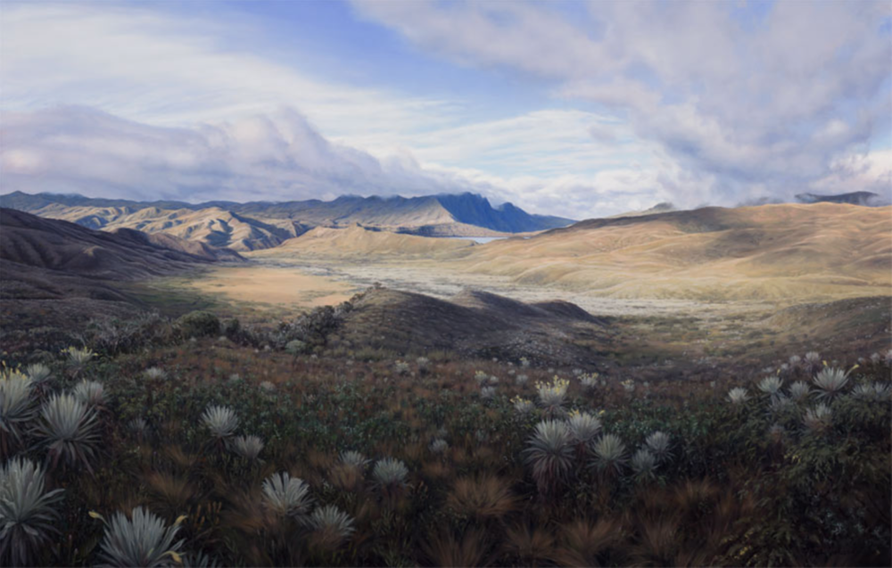 View from La Paila (Frailejon Valley and Laguna Chingaza) Chingaza National Park, Colombia  2017 Oil on canvas  42 x 66 in. (107 x 168 cm)