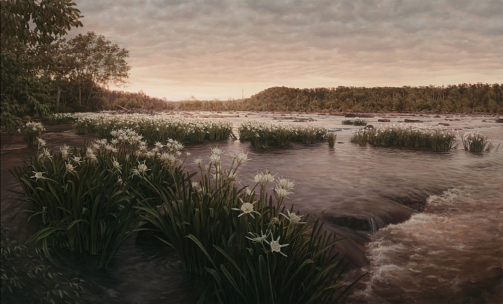 """Anthony Shoals Broad River, Georgia, 2009 (Elbert / Wilkes County, May 20) Oil on canvas 40"""" x 66"""""""