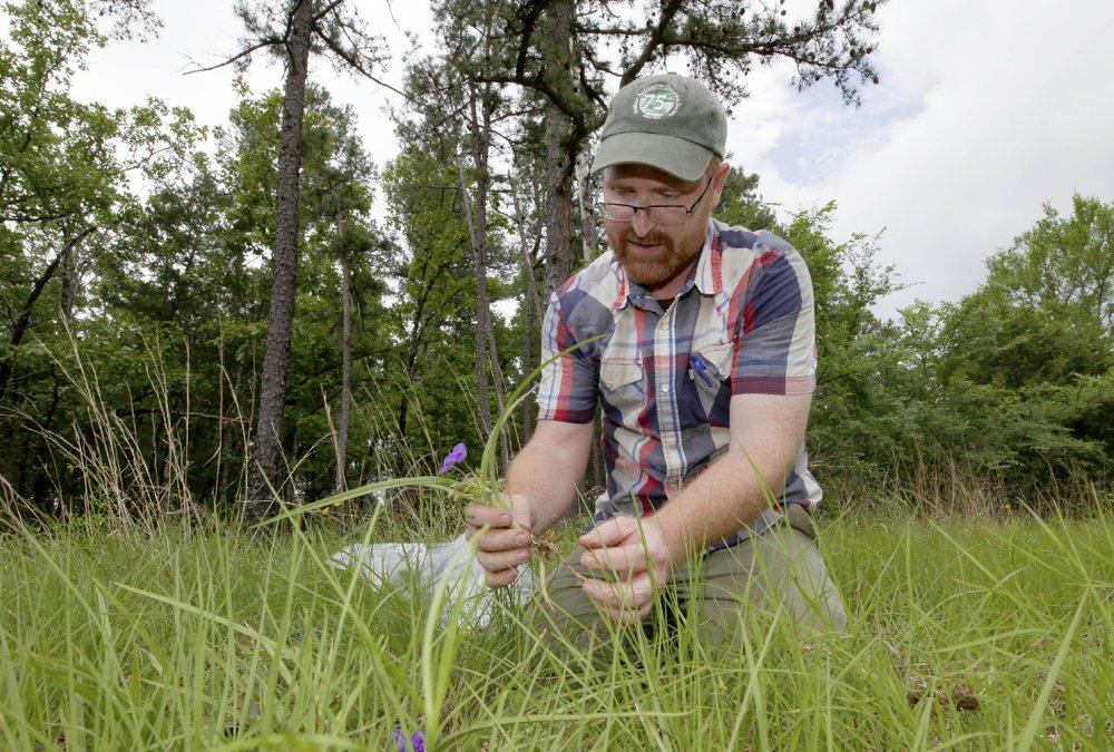 Sacred Gems: the Importance of Small, High-Quality Remnants to Larger-Scale Grassland Restoration - Theo Witsell, SGI Director of Research