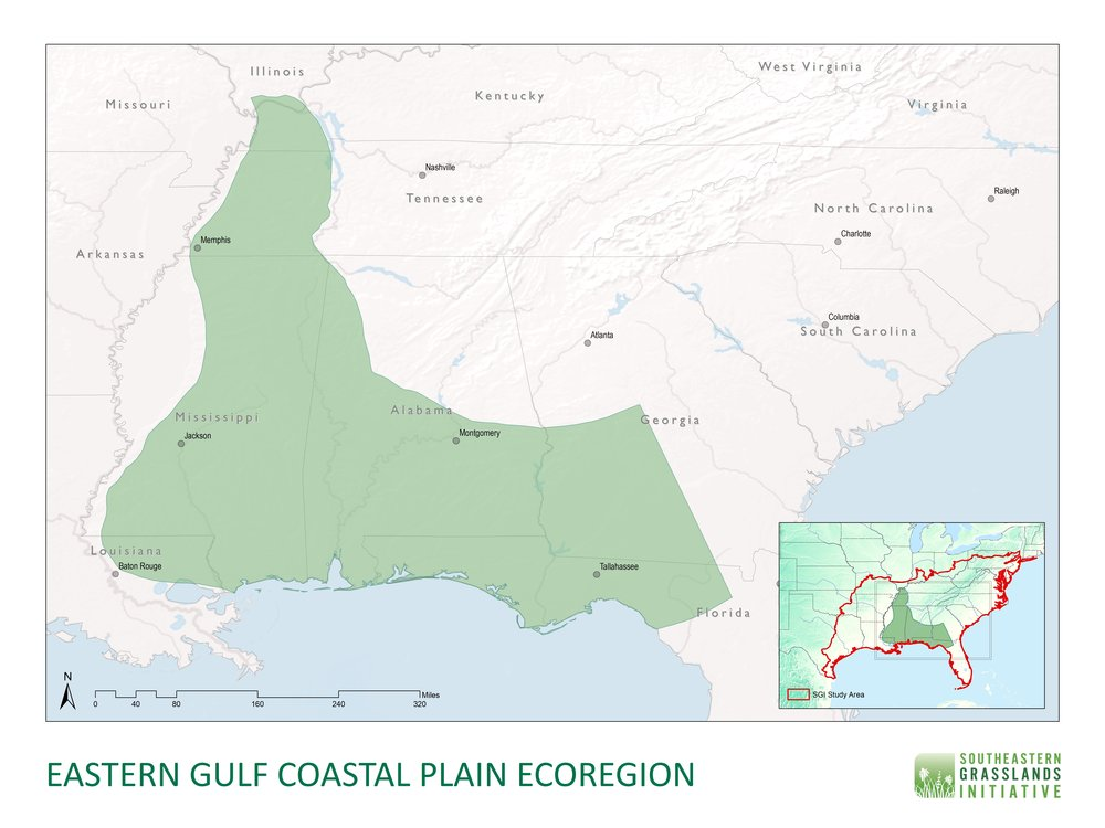 East Gulf Coastal Plain