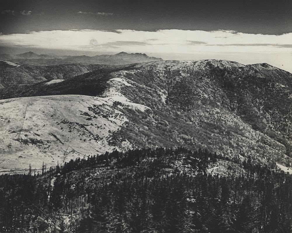 Roan Mountain.png