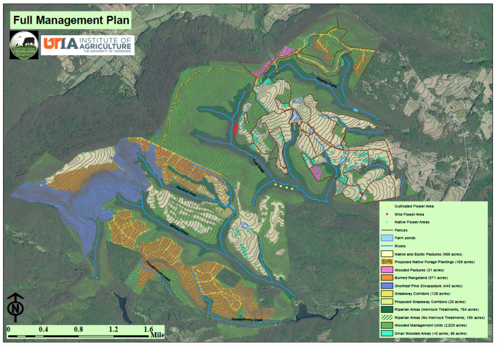 Coal Creek Farm management plan prepared by the University of Tennessee Center for Native Grasslands Management.