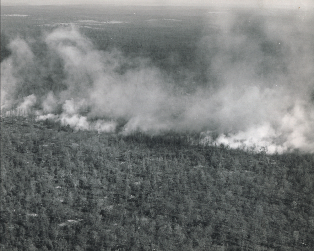Wildfire on the Cumberland Plateau in Grundy Co. 1952.