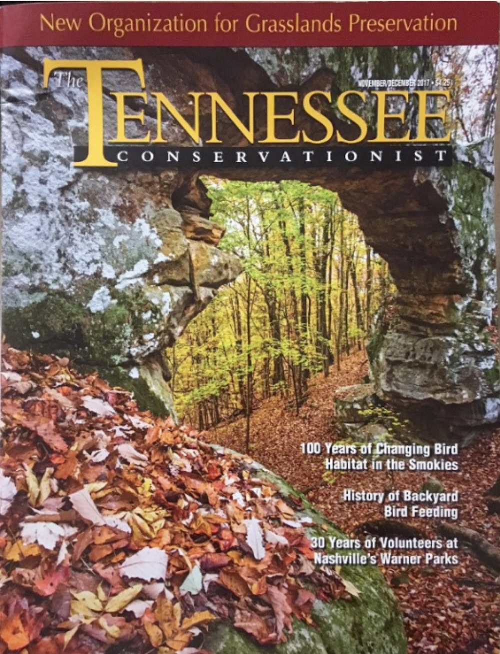 Article in The Tennessee Conservationist magazine or other popular formats -
