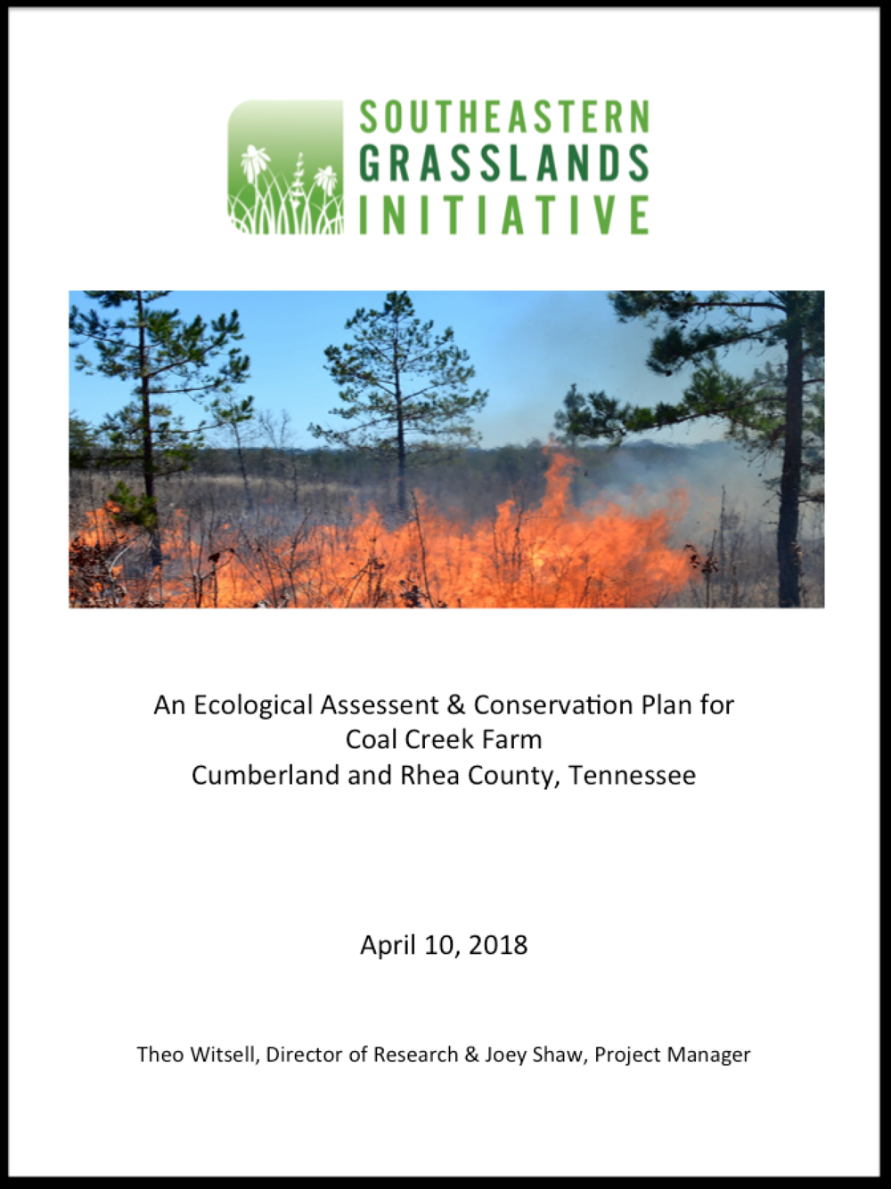Final Report and Restoration & Management Plan -