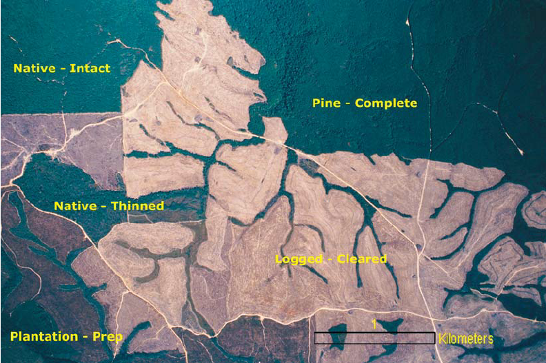 Aerial-view-from-FSA-slide-demonstrating-forest-clearings-in-Grundy-County-TN-southern.png