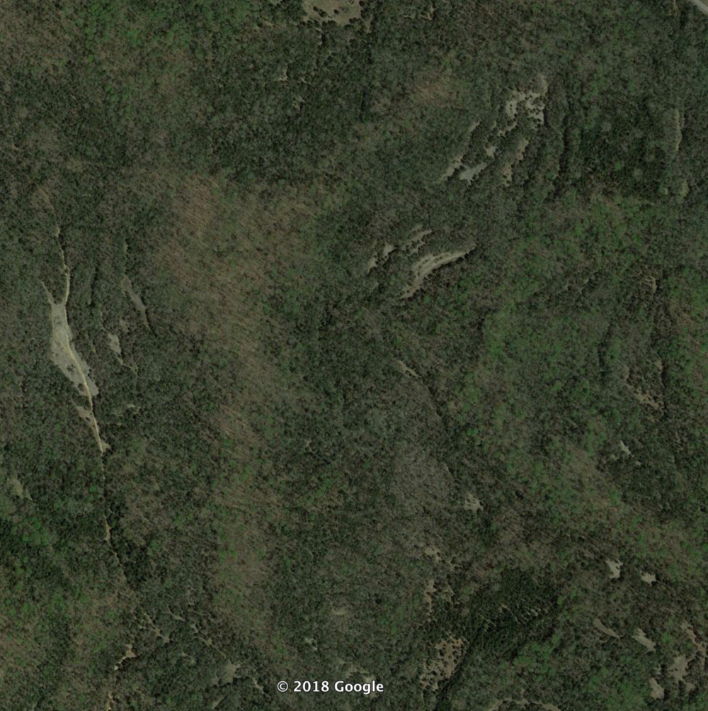 Glades appear as openings in aerial photo