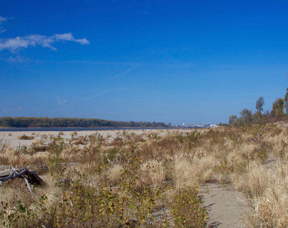 Mississippi+River+Grassland.jpg