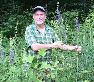 Workshop in Grassland Plant Identification? - Click here for 2019 Schedule of Event