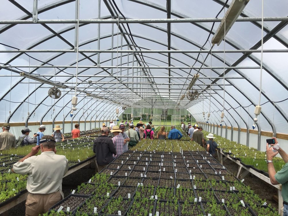 Workshop on Propagating & Growing Grassland Plants - Click here for 2019 Schedule of Event