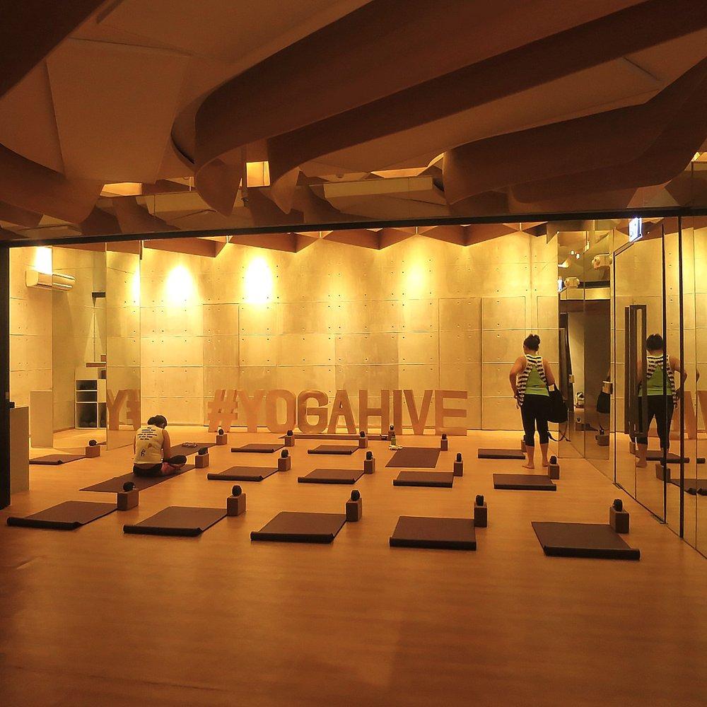 Yoga Hive 3.JPG